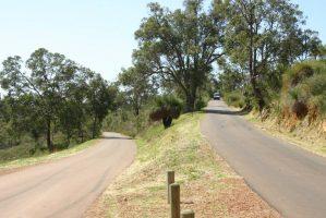 Zig Zag Scenic Drive