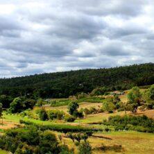 Perth Hills Wine Region