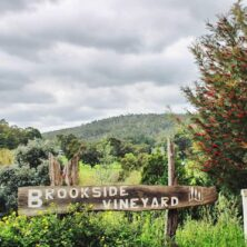 Brookside Vineyard