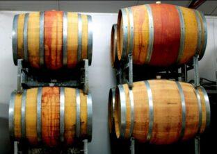 Discover the Perth Hills Wine Region