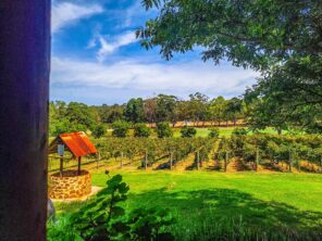 Fairbrossen Winery – Perth Hills