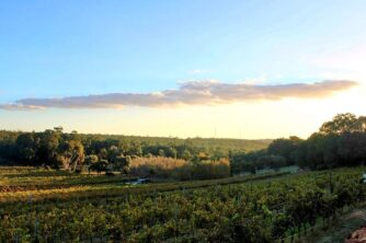 Father's Day in the Perth Hills Wine Region